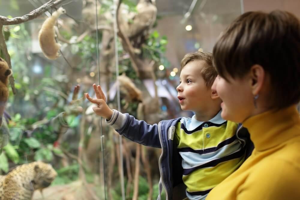 Kinderen museum