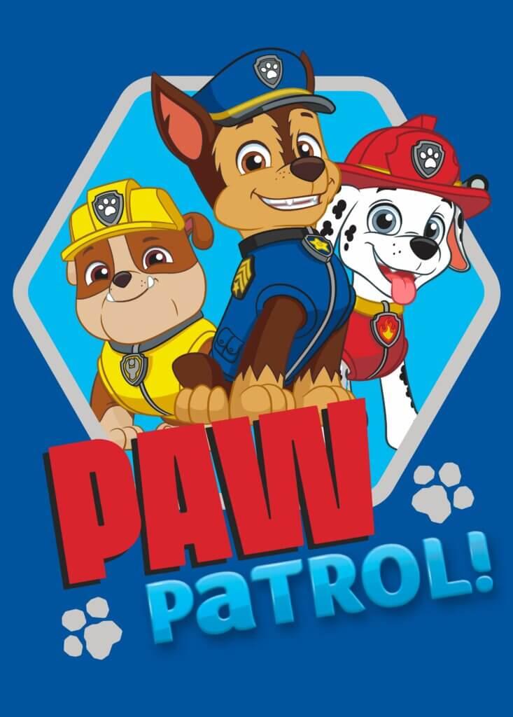 Paw patrol blauw vloerkleed